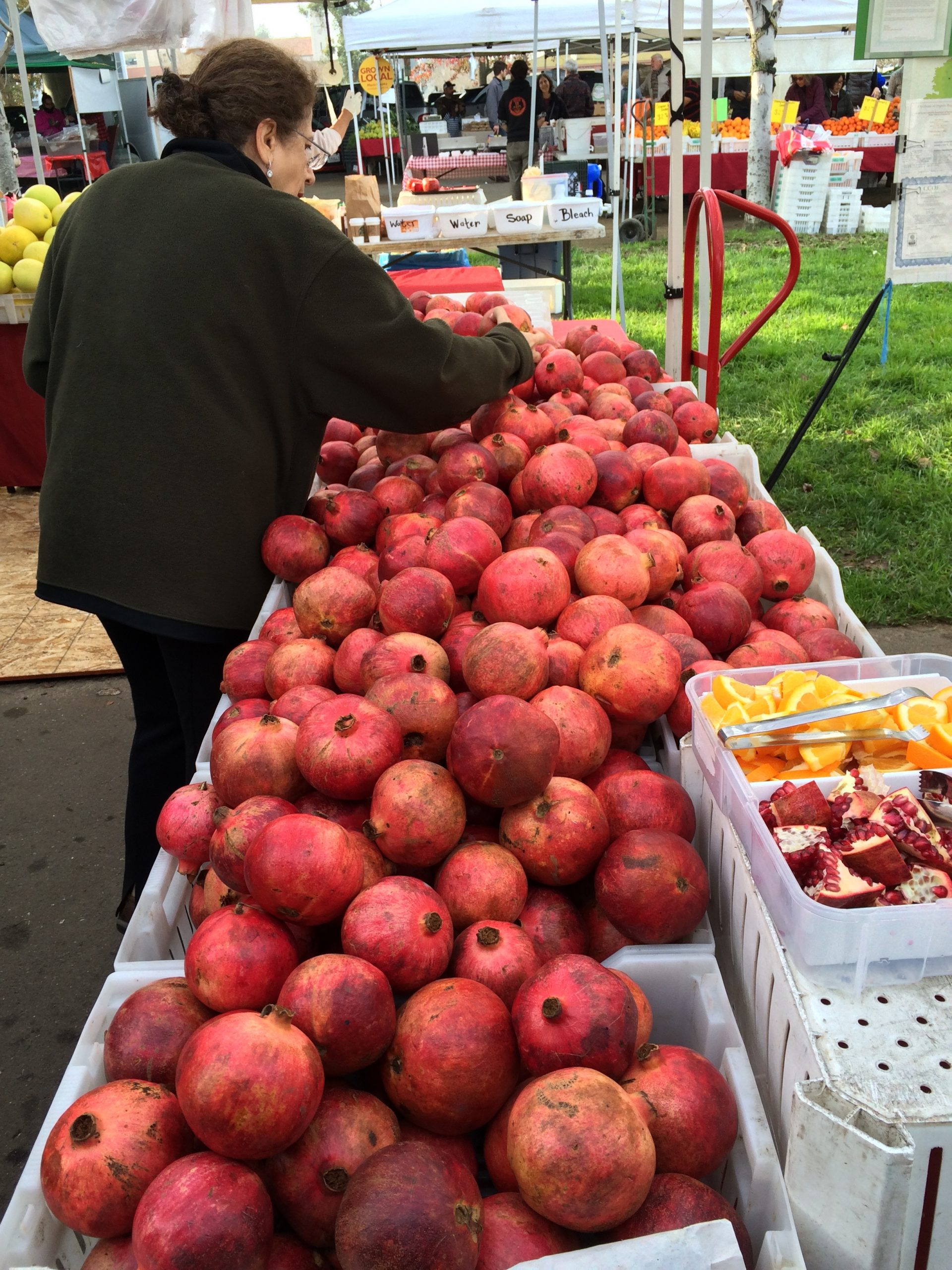Farmers Markets and Equity
